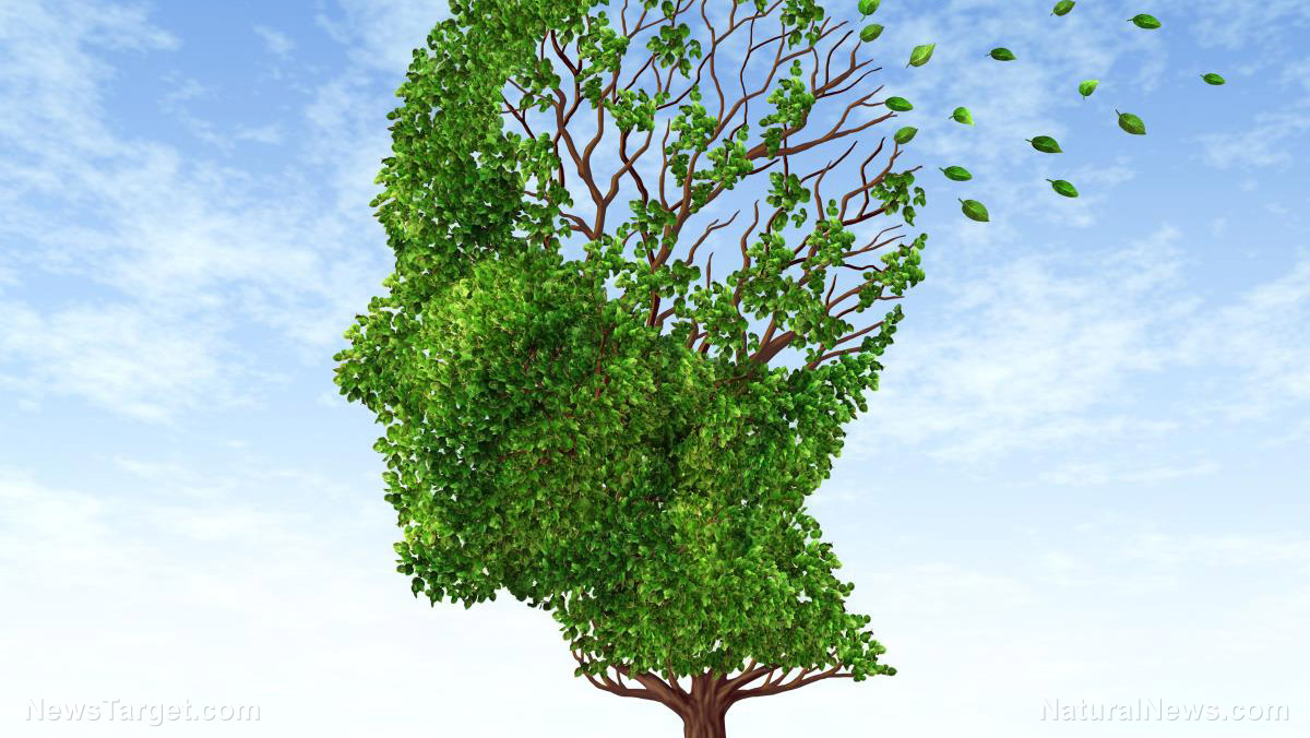 Could dementia be just another manifestation of chronic